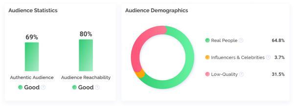 instagram-audience-breakdown