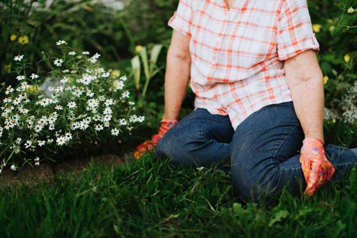 hiring-a-garden-landscaper