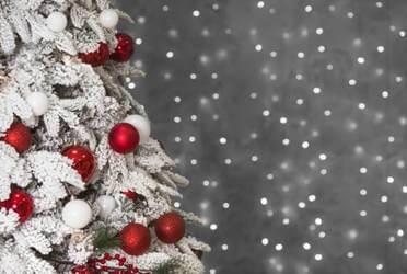 wall-mounted-christmas-trees